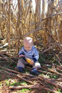 The Ultimate List of Fall Friendly Activities for Babies & Toddlers