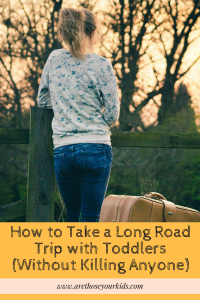 How to Take a Long Road Trip with Toddlers (Without Killing Anyone)